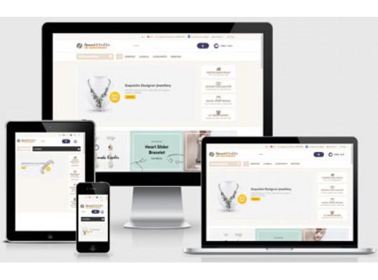 E-Ticaret Paketi Takı v2.5
